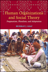 Cover for leaf: Human Organizations and Social Theory: Pragmatism, Pluralism, and Adaptation. Click for larger image