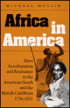link to catalog page MULLIN, Africa in America