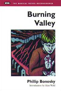 Burning Valley - Cover