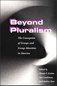 Cover for KATKIN: Beyond Pluralism: The Conception of Groups and Group Identities in America