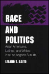link to catalog page SAITO, Race and Politics