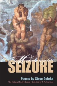 Cover for Gehrke: Michelangelo's Seizure. Click for larger image