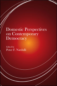 Domestic Perspectives on Contemporary Democracy - Cover