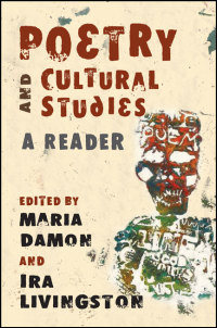 Cover for damon: Poetry and Cultural Studies: A Reader. Click for larger image