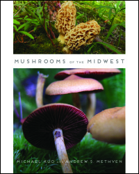 Cover for Kuo: Mushrooms of the Midwest. Click for larger image