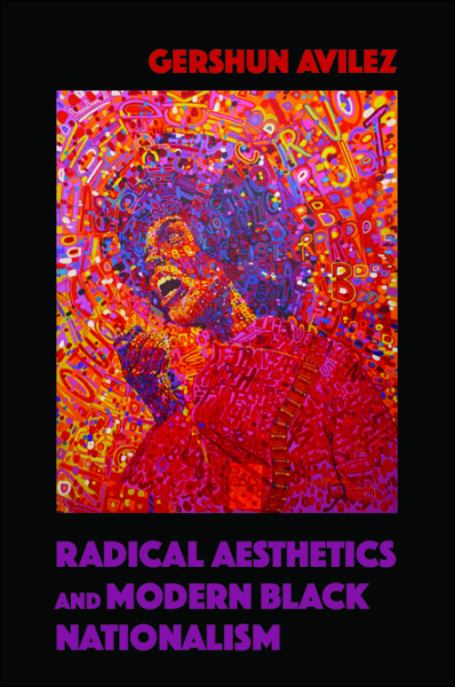 UI Press | GerShun Avilez | Radical Aesthetics and Modern