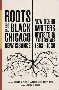 Roots of the Black Chicago Renaissance - Cover